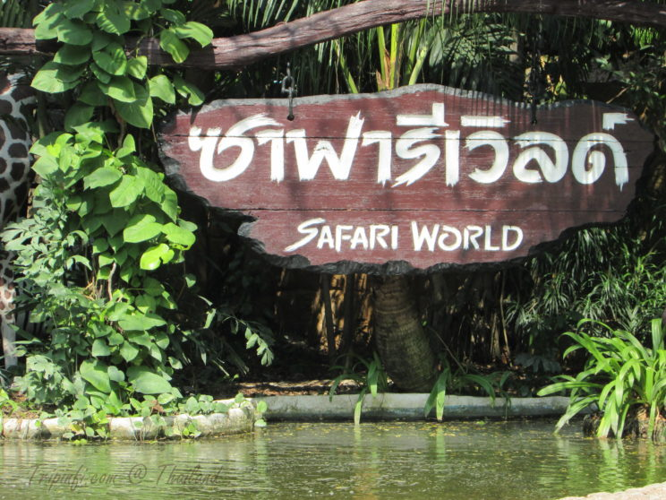 Safari World Bangkok, Thailand - Tripinfi.com