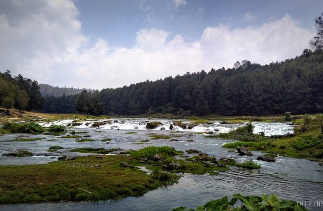 Ooty Waterfall - Ooty sightseeing