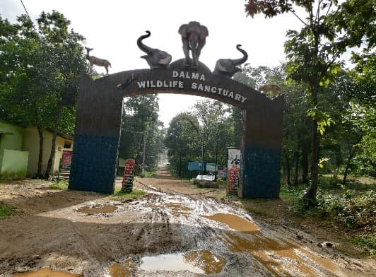 Dalma Wildlife Sanctuary Entrance
